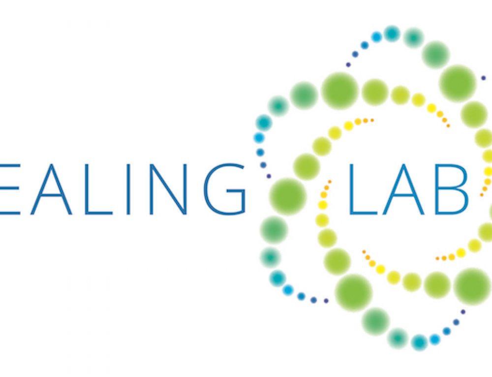 What is Healing Lab Energetics?